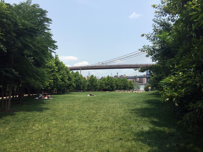 Gramado do Brooklyn Bridge Park