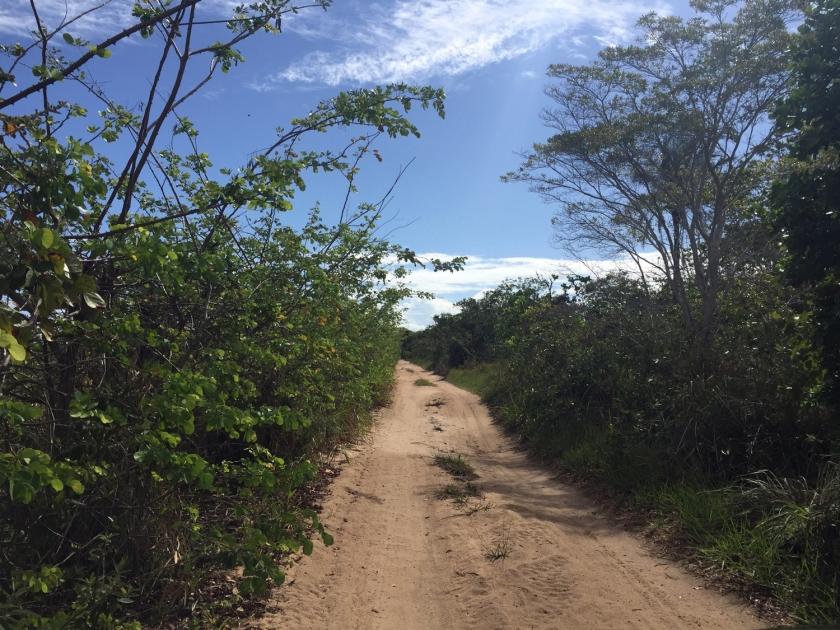 Estrada para as praias mais distantes