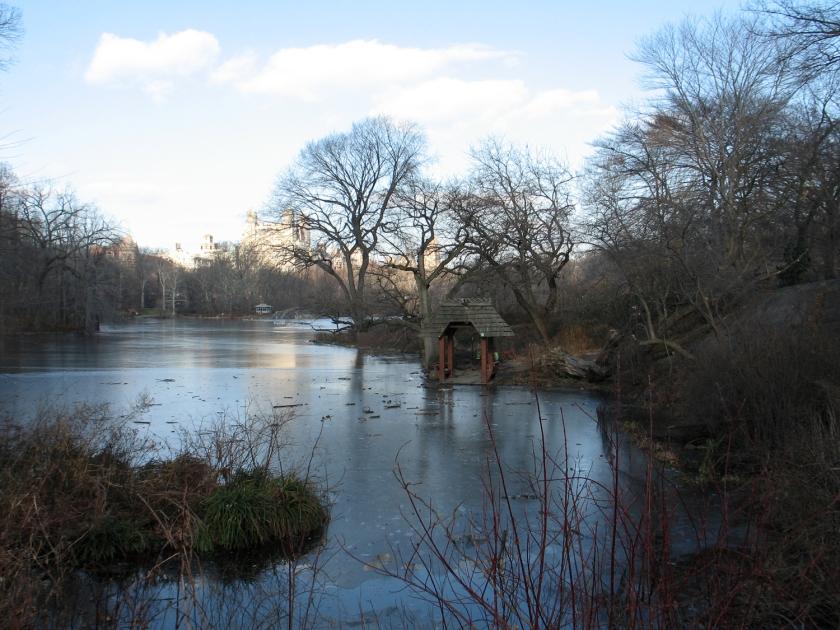 The Lake, no inverno