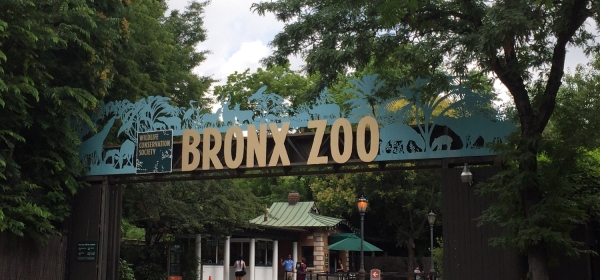 Asia Gate do Bronx Zoo