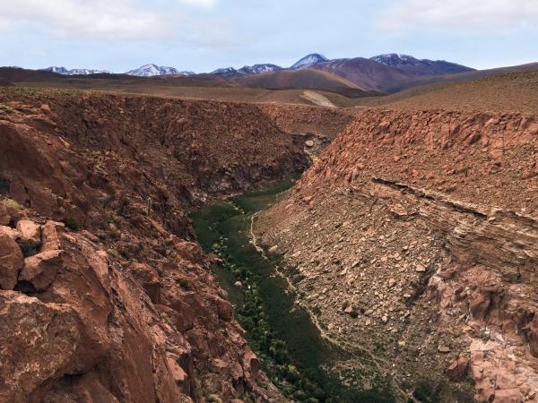 Vale no deserto do Atacama