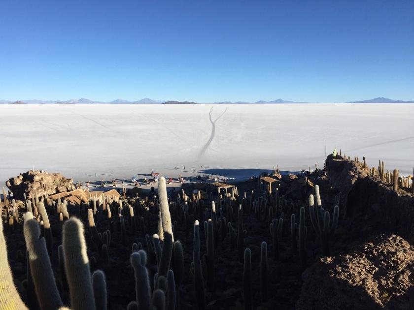 Isla Pescado vista da Isla Incahuasi