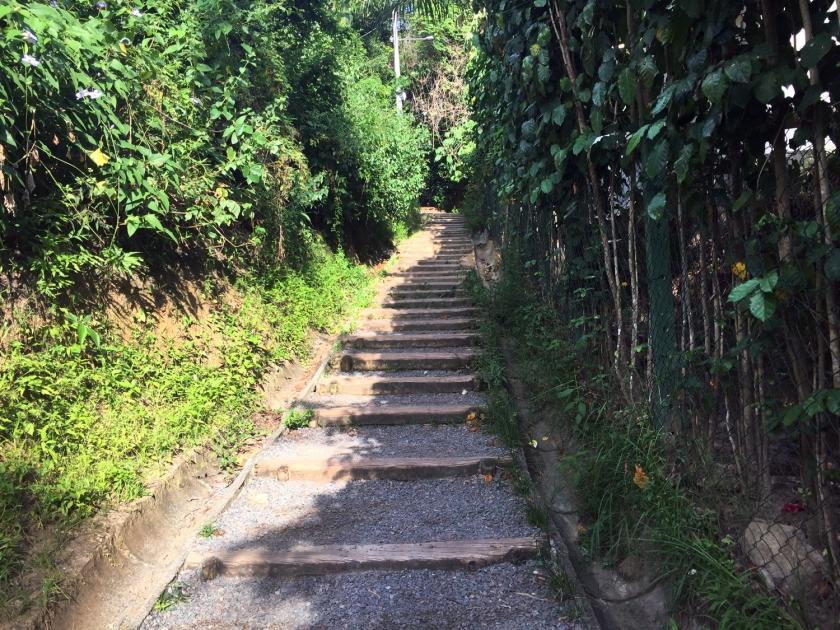 Caminho para o Farol do Morro