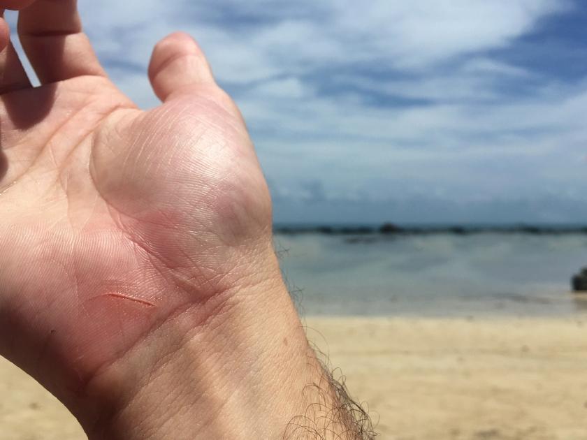 Corte nos recifes de corais