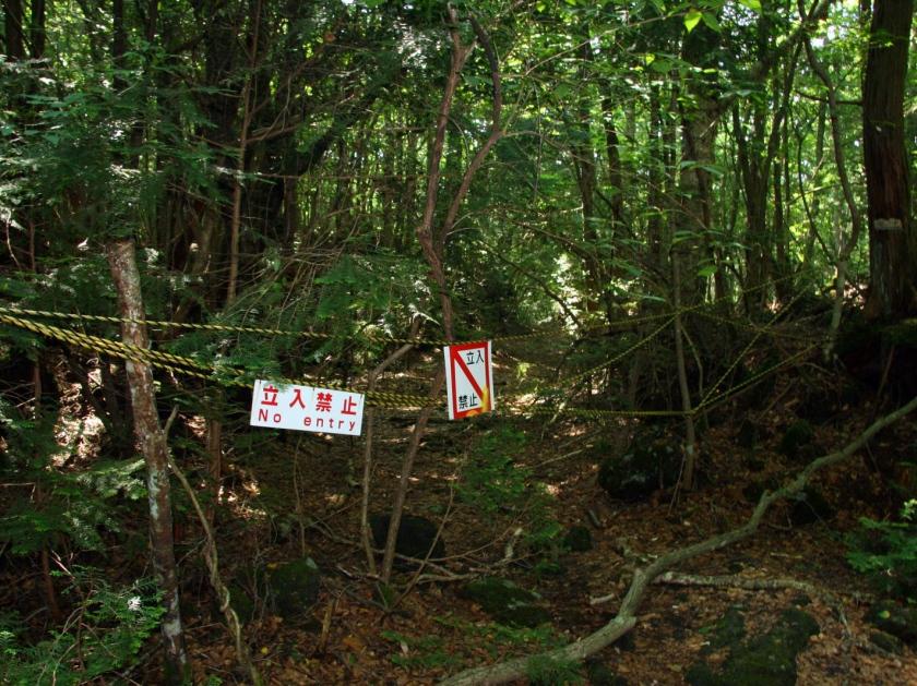 Fitas proibindo a entrada em trilhas alternativas
