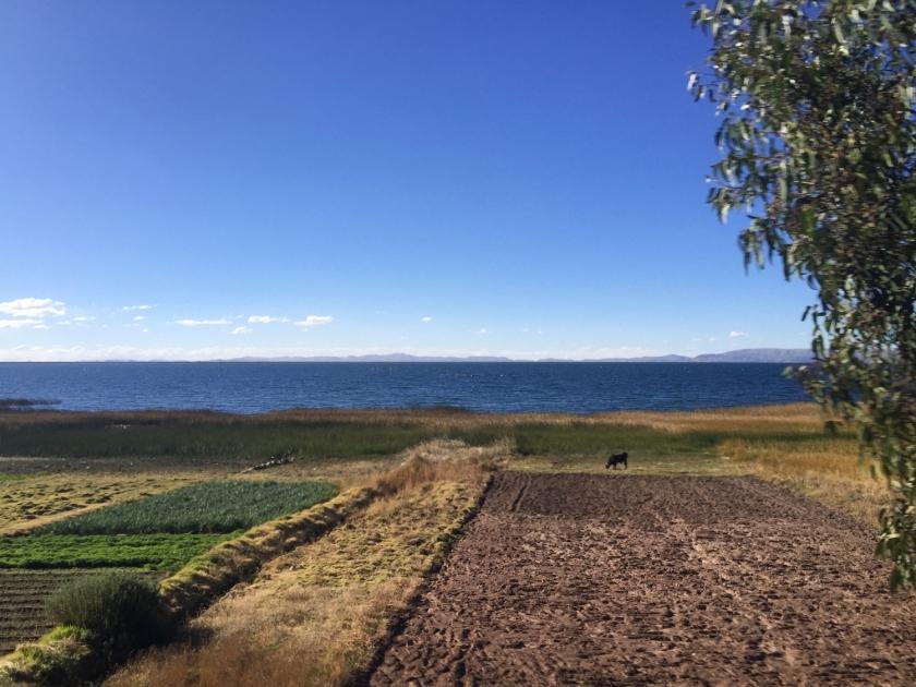 Lago Titicaca na viagem entre Copacabana e Puno