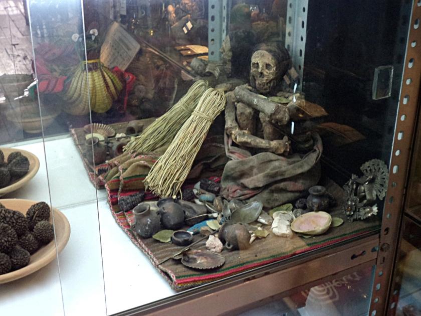 Múmia e objetos arqueológicos