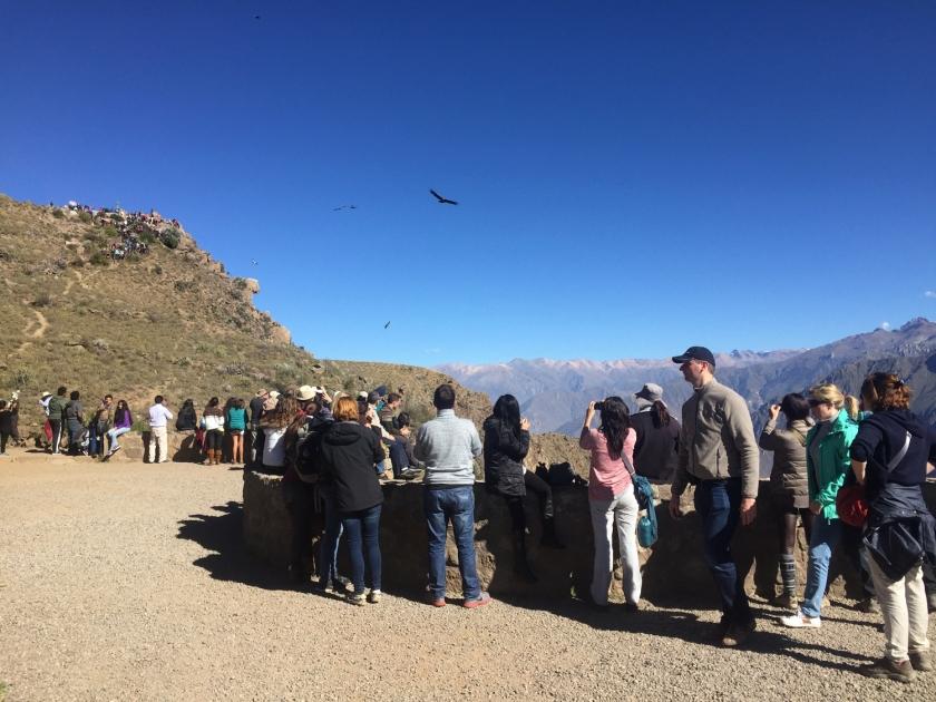 Turistas no Mirador Cruz del Condor