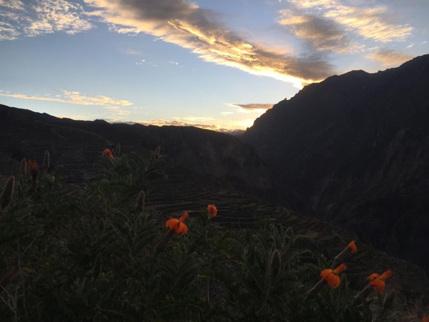 Pôr-do-sol no Cañon del Colca
