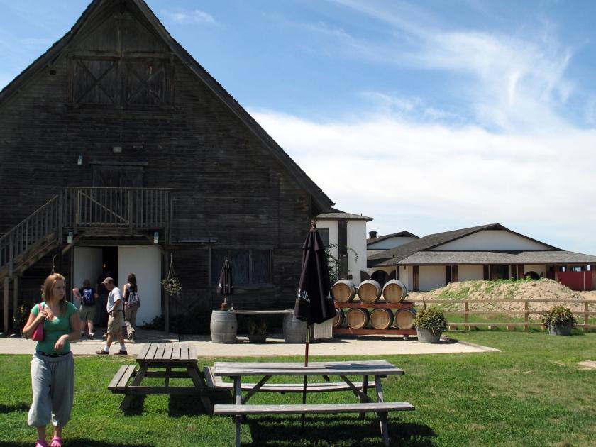 Visita a uma das vinícolas da região