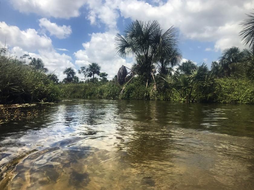 Rio Formiga