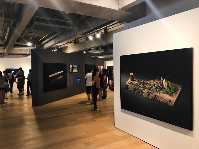 Exposição Santoyama, de Yoshihiro Narisawa e Sergio Coimbra