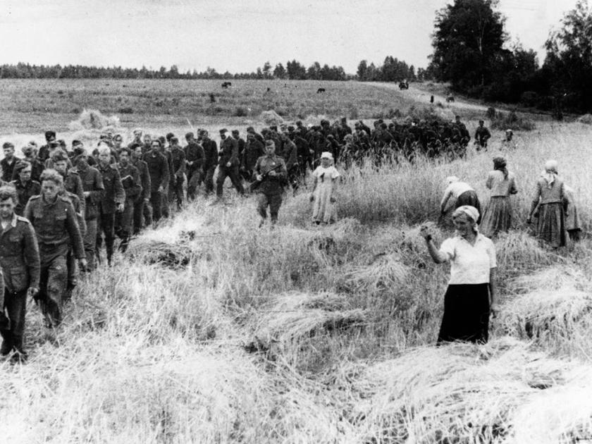 Militares passando por plantação
