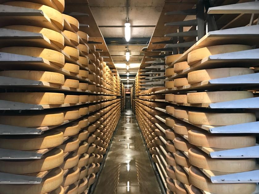 Maturação dos queijos