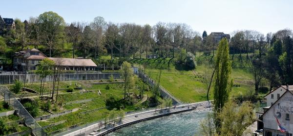 Parque Bärengraben visto de cima da ponte
