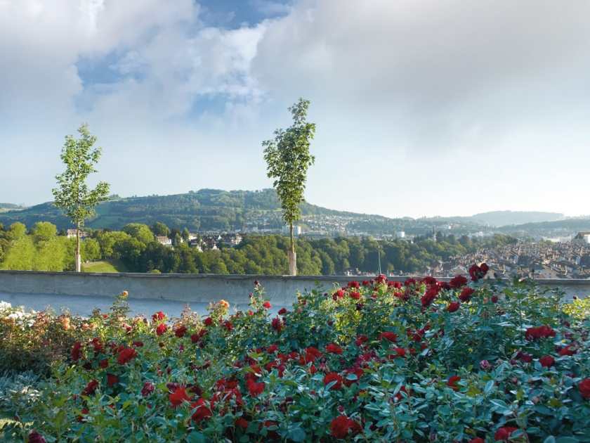 Parque Rosengarten