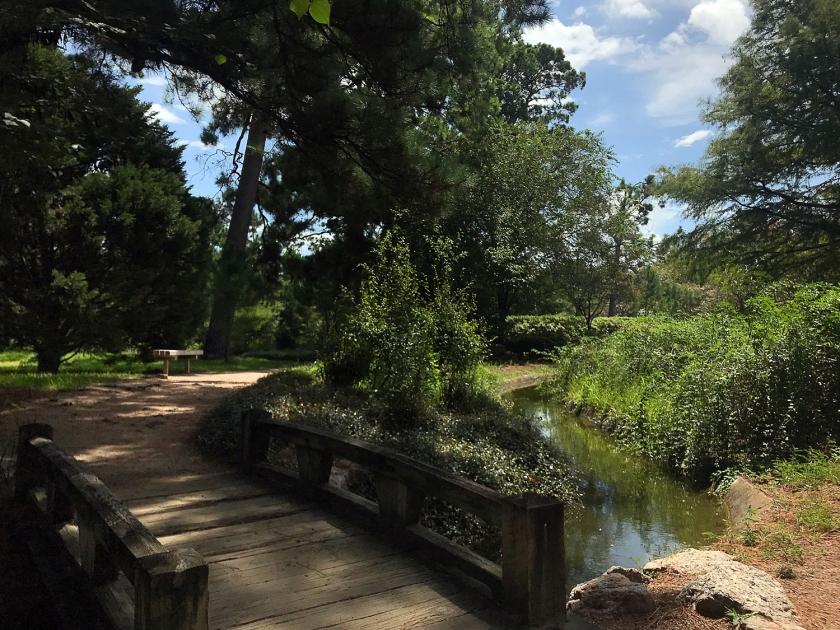 Ambiente agradável do jardim
