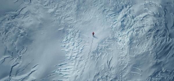 Luta pela sobrevivência na neve