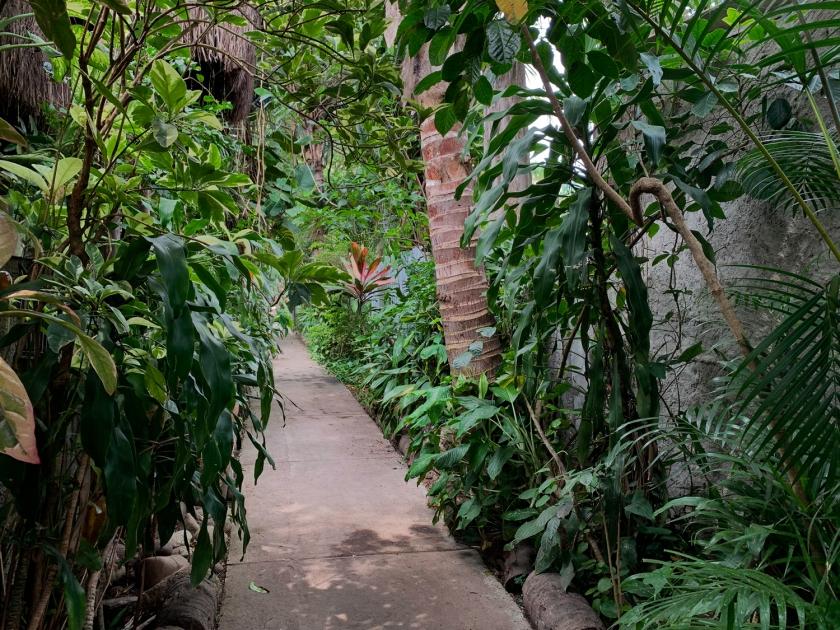 ilha-da-gigoia-rio-de-janeiro-natureza