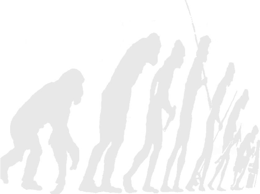 Evolução do homo sapiens