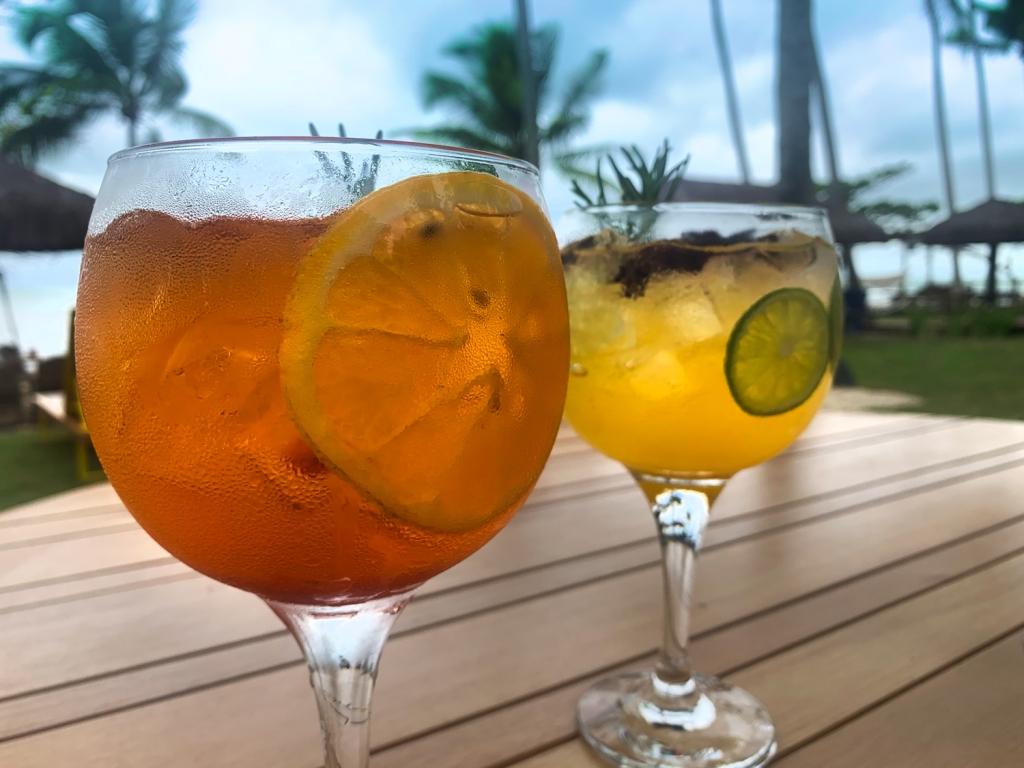 Gin tônica tradicional e tropical