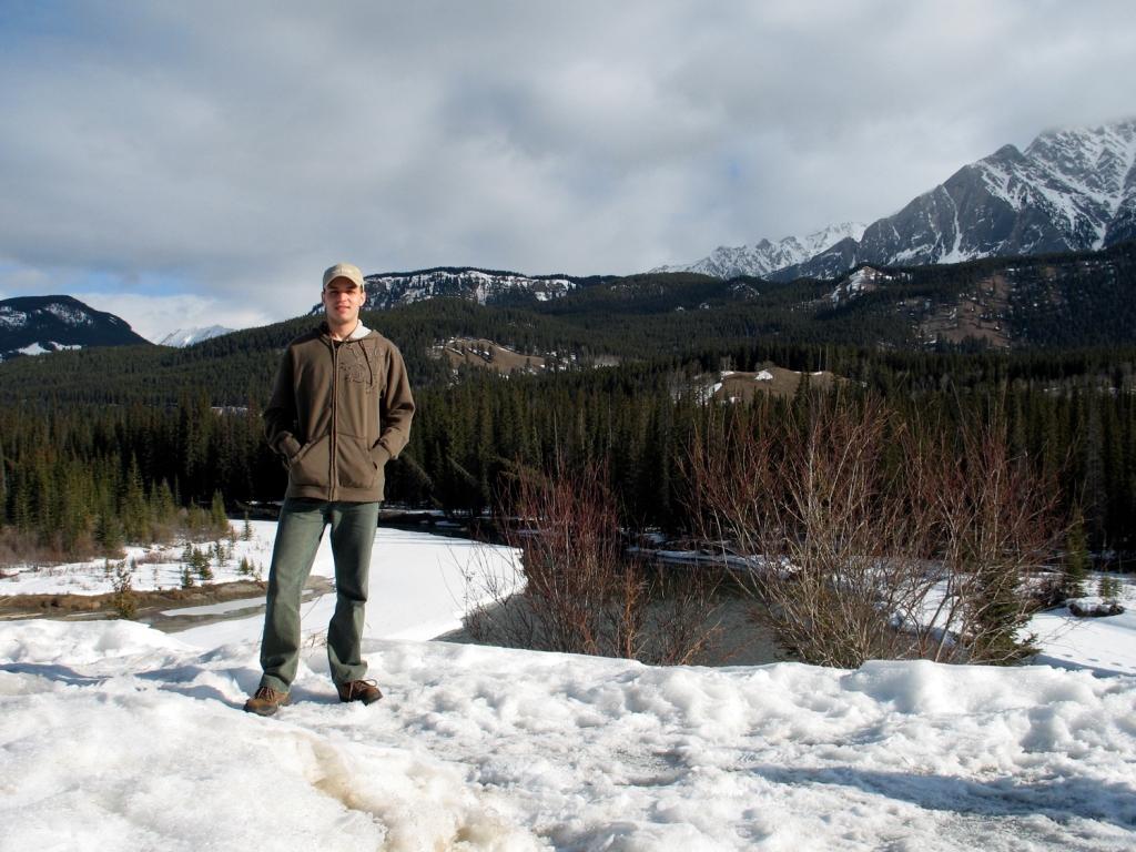 Florestas de pinheiros e montanhas nevadas
