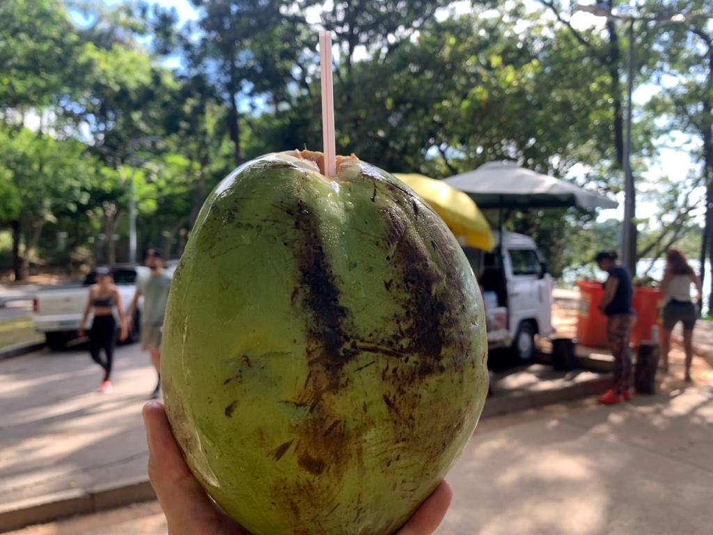 Parada para tomar uma água de coco
