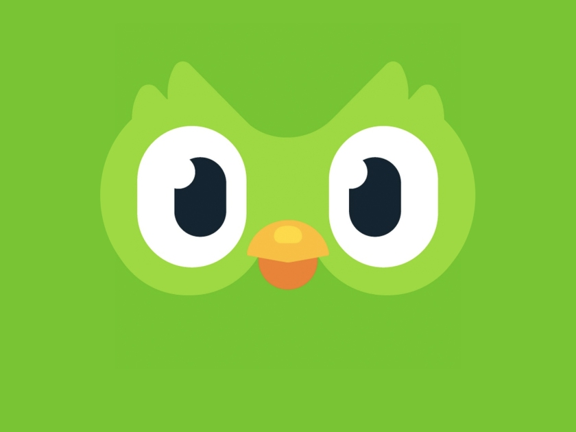 Aprenda outras línguas com o Duolingo