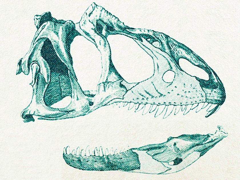 Animais pré-históricos