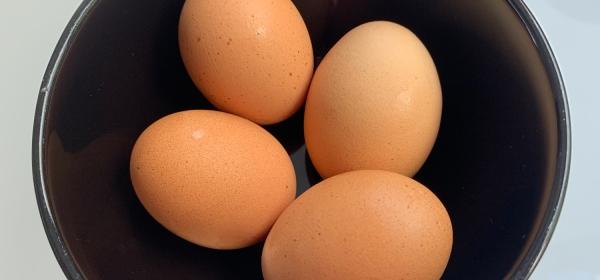 Como fazer ovos pasteurizados